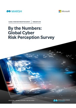 By the Numbers: Global Cyber Risk Perception Survey