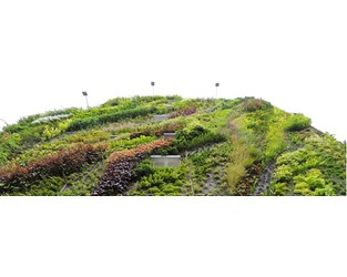 How Sustainability is Shaping Modern Architecture - Greenroofs.com