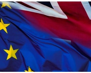 Professional risk management helps companies ensure business continuity post-Brexit