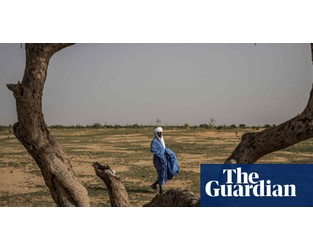 Sahel region is 'canary in the coalmine' on climate, says UN official - The Guardian