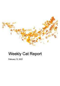 Weekly Cat Report - February 12, 2021