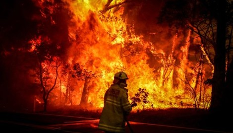 Insurance Industry Calls for Action to Mitigate Climate Risk as Australia Bushfires Widen