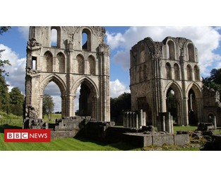Illegal detectorists sought for damage to abbey - BBC