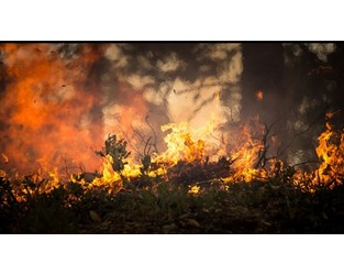 Australia: Current bushfire insurance approach could make 1 in 20 homes uninsurable by 2100