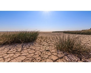 Turkey:   Agricultural Insurance Pool pays out over US$25m in drought yield compensation