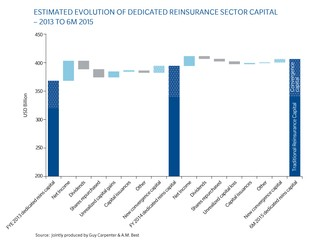 Dedicated Reinsurance Capital Estimate at July 1, 2015