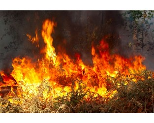 Report: Nearly 2M Homes at Elevated Risk of Wildfire