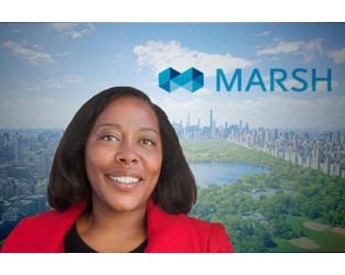 Marsh looks to IBM for chief digital officer