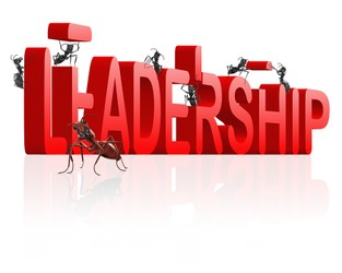Good Leaders Celebrate Progress, Find Perspective in the Face of Failed Projects