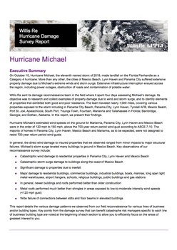Hurricane Damage Survey Report - Hurricane Michael
