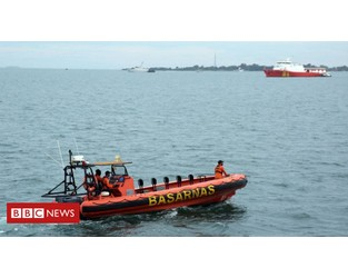 Sriwijaya Air crash: Indonesia's black box locator damaged - BBC