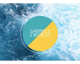 Gabriel's 2 Worlds: Economy (Part I)