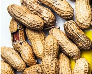 Allergy deaths highlight nutty labelling