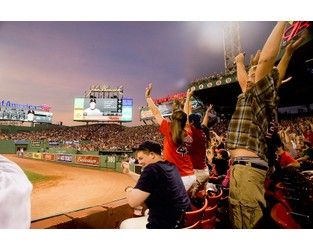 Senators' Pitch to Major League Baseball: Report Data on Fan Injuries