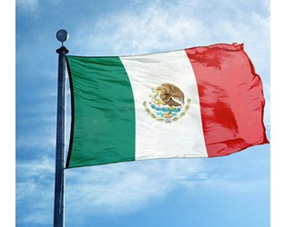 Best continues negative outlook for Mexican insurance sector