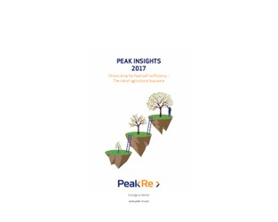 Peak Insights 2017