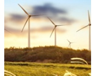 Mitigating the environmental risks of wind power