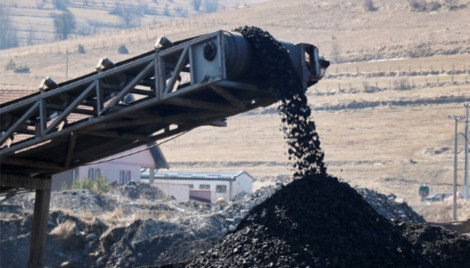 Ascot declines to renew insurance policy for Adani coal mine - Insurance Business
