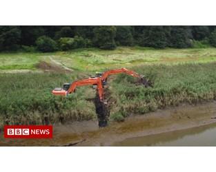 Work begins on River Tamar flood-prevention wetland - BBC
