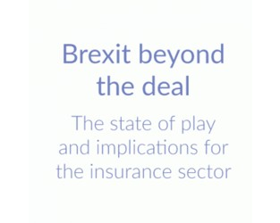 Brexit beyond the deal - Insights paper