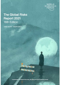 The Global Risks Report 2021 16th Edition - World Economic Forum