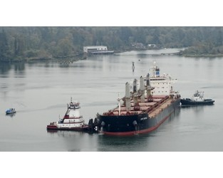 US Coast Guard Responds to Two Groundings and a Leaky Containership - The Maritime Executive
