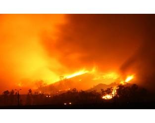 Risk environment update: Wildfire risk