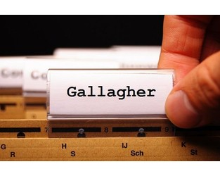 Gallagher keeps sponsorship deal after apologising for racist language