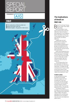 Directors and Officers Special Report: Brexit