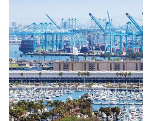 US port delays risk $90bn of trade, warns Russell Group