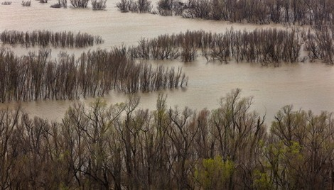 Rising Costs of U.S. Flood Damage Linked to Climate Change - Scientific American