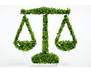 Twenty-fold increase in climate law recorded