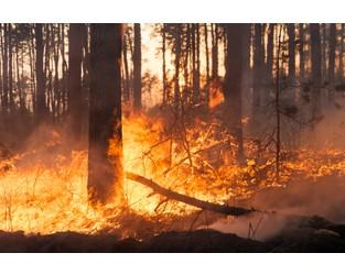 Hammer Sparks Led to California's Mendocino Blaze
