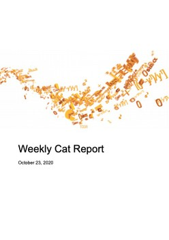 Weekly Cat Report - October 23, 2020