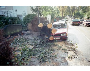 """A shocking landscape""; After the Great Storm' of 1987"