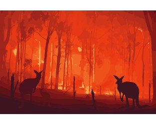 Bushfire Commission issues warning to Australia's market - Insurance Asia News